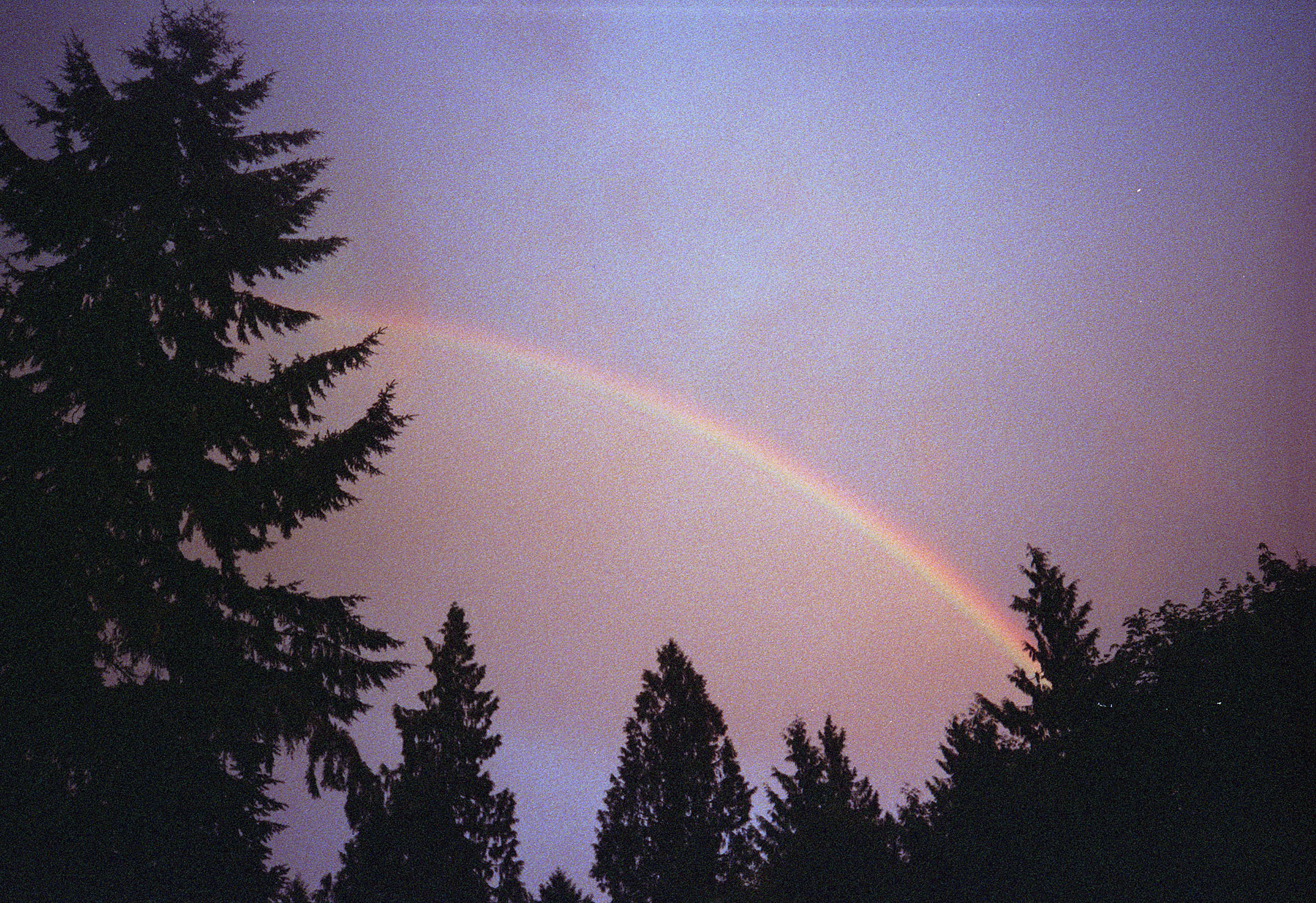 Softest Summer (Double Rainbow) 2012